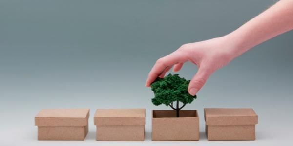 Estudio revela que el consumo consciente mantendrá la sostenibilidad como prioridad para los negocios