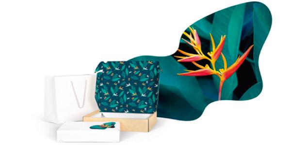 Desarrollo de papeles especiales para impresión digital y flexo de alta calidad para cartón corrugado