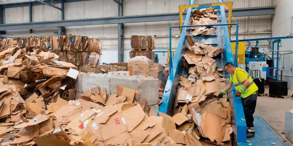 Economía circular en la industria del papel y el cartón corrugado